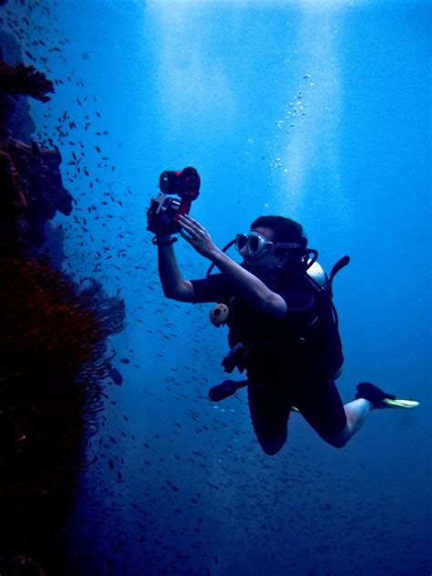 diving for treasure to help protect the world s great reefs