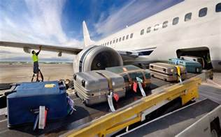 delta airlines baggage fees everything you need to know about every airline s baggage
