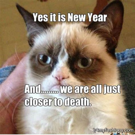 grumpy cat new year new year grumpy cat images 2016 2017 b2b fashion