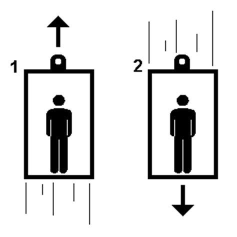 Bathroom Scale Elevator Physics Quiz Forces