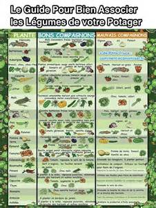 top 25 ideas about potager bio on graines bio