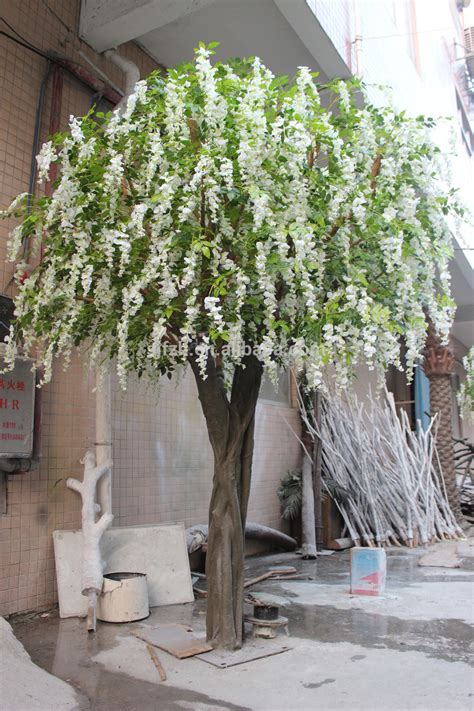 large indoor trees for weddings buy large indoor trees indoor tree fence argan trees for sale