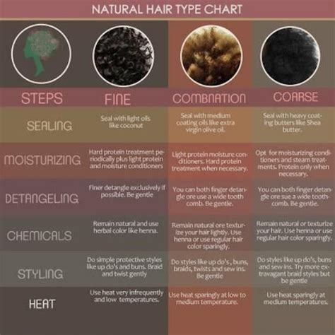 texture pattern natural hair 27 best images about hair type chart on pinterest