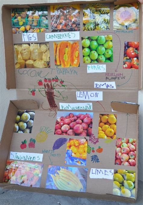 craft project craft project ria s fruit box a yumminess
