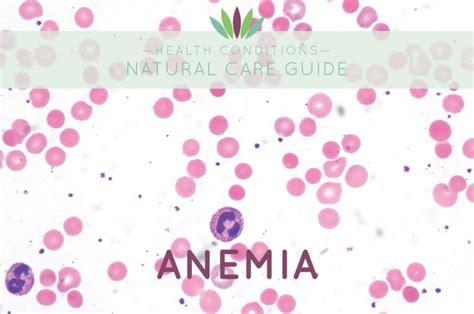 Http Truecellulardetox True Cellular Detox Protocol Program by Anemia Myersdetox