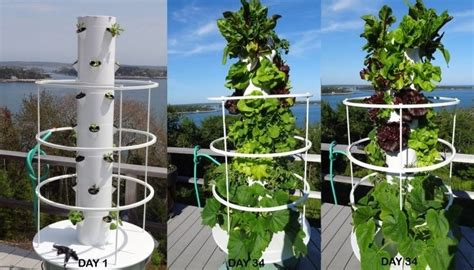 Vertical Pvc Garden Vertical Planter Pvc Tower For The Garden Of