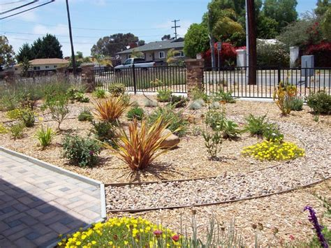 colorful new front yard in chula vista traditional
