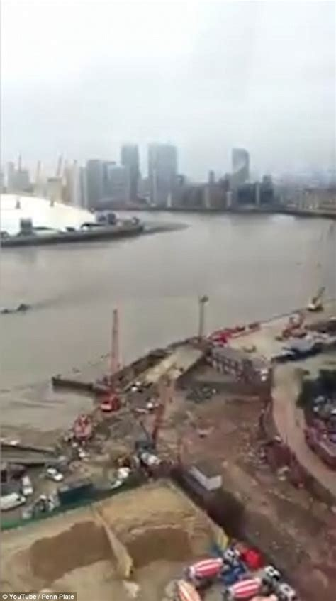 london thames monster has the loch ness monster moved to london daily mail online