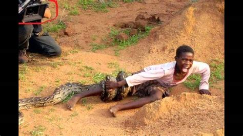 Combined Mph Mba Programs by Mzansi Express Boy Attacked By Snake As Photographers