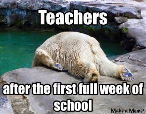 First Week Of School Meme - crayons curls first week and using glue in kinder