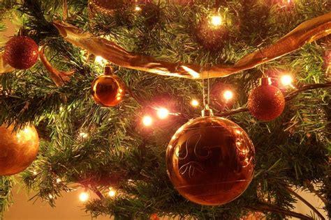 arboles de navidad diferentes c 243 mo decorar 225 rboles de navidad diferentes