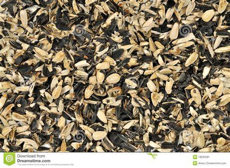 shells of sunflower seeds stock image image 18630281