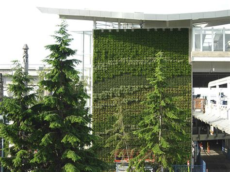 Living Wall Canada Greenwall Archives Greenroofs Sky Gardens