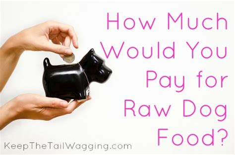 how much food for puppy how much would you pay for food keep the wagging
