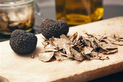 cucinare il tartufo nero come cucinare il tartufo variet 224 e ricette regionali
