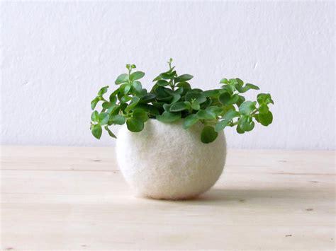 felt succulent planter felted bowl mini flower vase