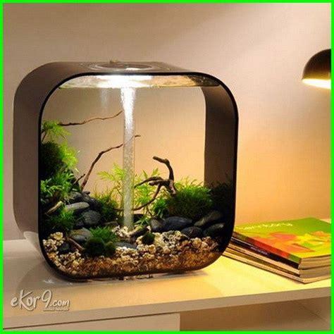 gambar aquarium ikan cupang unik minimalis baik