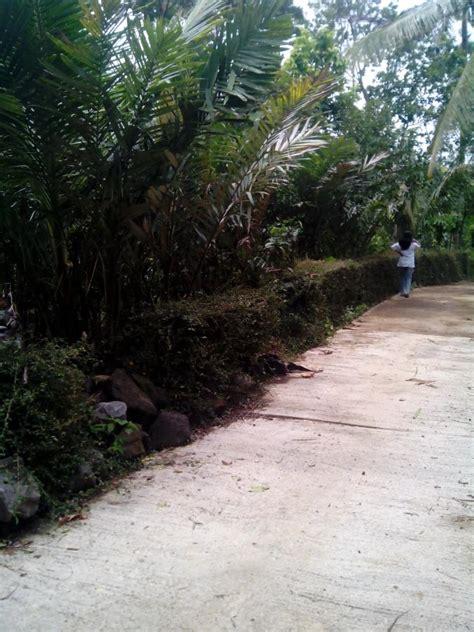 jual fiforlif semarang tanah dijual di jual tanah di bandungan ambarawa semarang