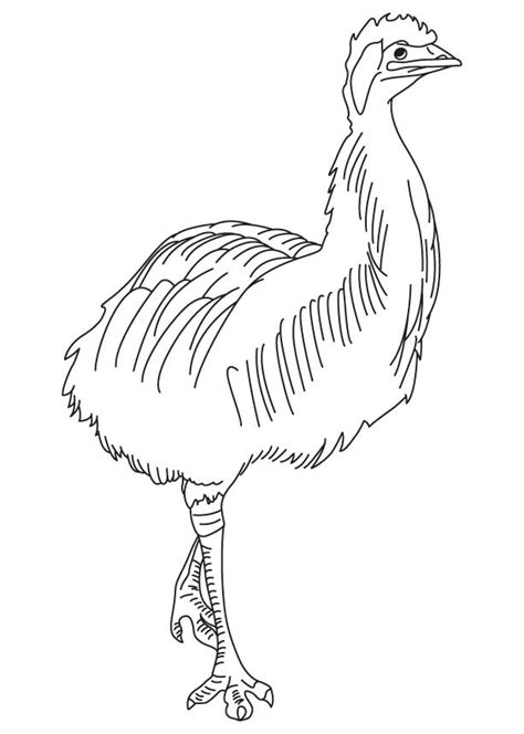 emu coloring page free free emu mask coloring pages