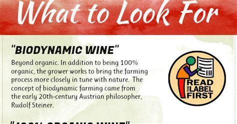 Sulfite Free Wine Detox by Why I Switched To Organic Wine Organic Wine Wine And