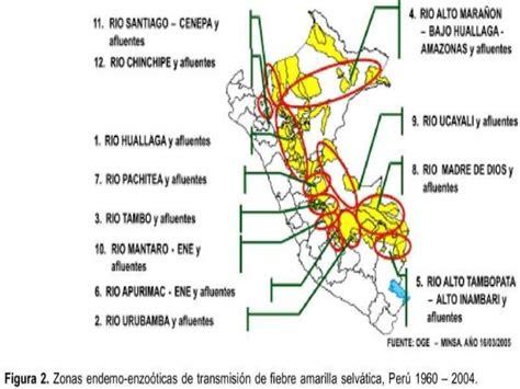 Fiebre Amarilla En El Peru 2016   fiebre amarilla