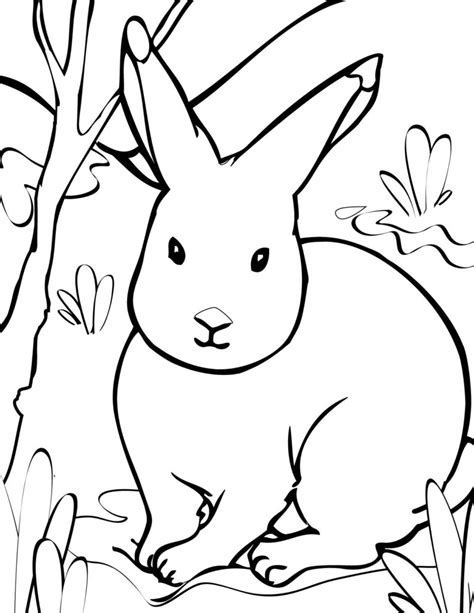 87 coloring sheets winter animals printable winter