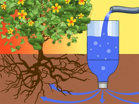 plastic bottle irrigation system 3 ways to make a drip irrigator from a plastic bottle