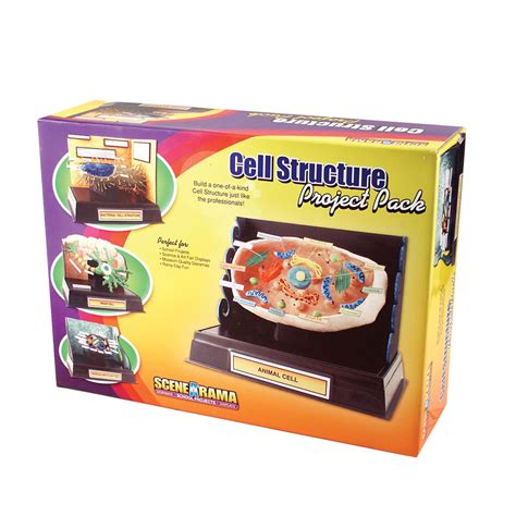 project kit cell structure project pack complete kits school