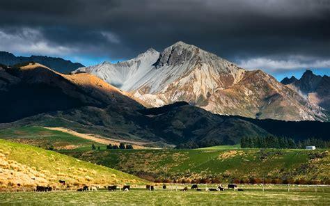 zealand landscape rock mountain snow pasture