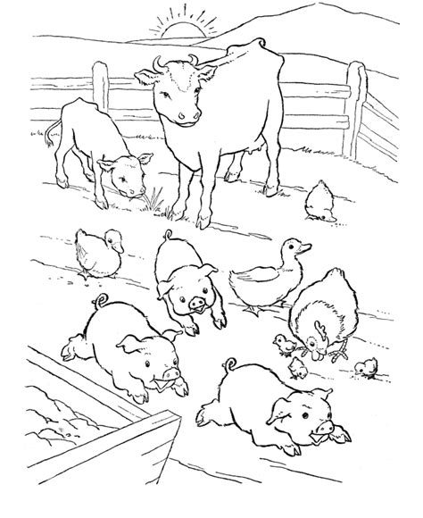 printable coloring pages animals farm farm animal coloring page barn yard pigs party on the
