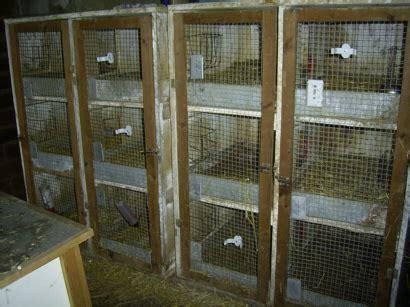 Kaninchenställe Kaufen 1938 by Kaninchenst 228 Lle Kaufen Kaninchenst Lle Zooprimus