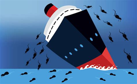 Rats From A Sinking Ship by Ahpra Rats Abandon Sinking Ship After Fettke Ban