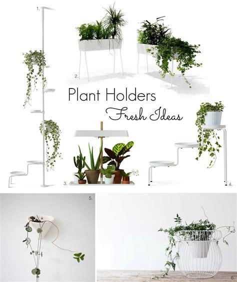 ikea plant ideas t d c indoor plants fresh ideas