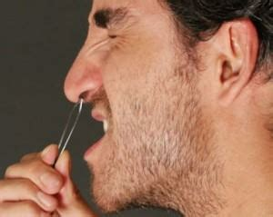 how to hide nostril hair best way to remove nose hair best way to get rid of nose