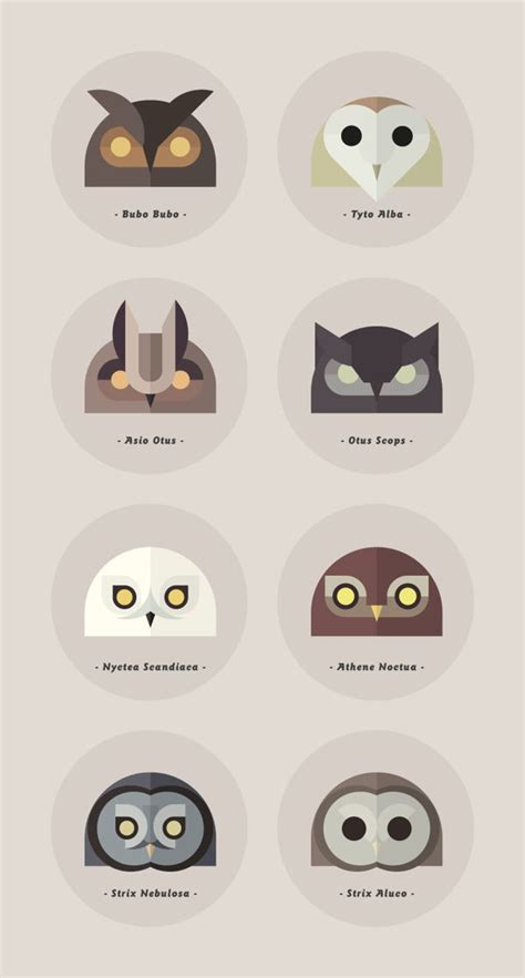 25 best ideas about owl graphic on pinterest owl print