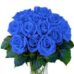 wallpaper bunga sakura warna biru kumpulan gambar bunga mawar biru gambar foto wallpaper