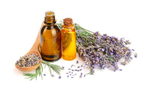 fragrance oil for oil ls essential oils and cats pet poison helpline