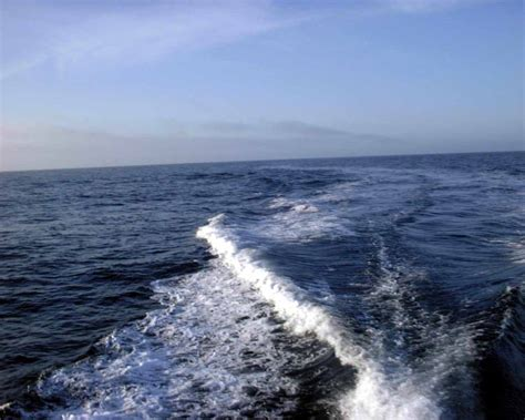 boat wake pin epic wake boats ajilbabcom portal on pinterest