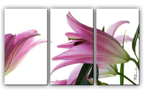 wohnzimmer bild 3 teilig lilie blume bild 3 teilig bilder leinwand wandbild