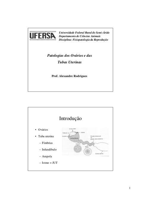 Patologias dos ovários e tubas