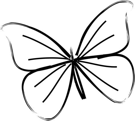 butterfly simple simple drawing of a butterfly images simple butterfly