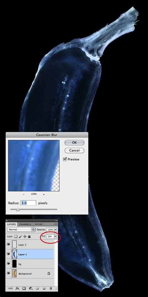 photoshop cs6 xray tutorial quick tip how to simulate x ray photography in photoshop