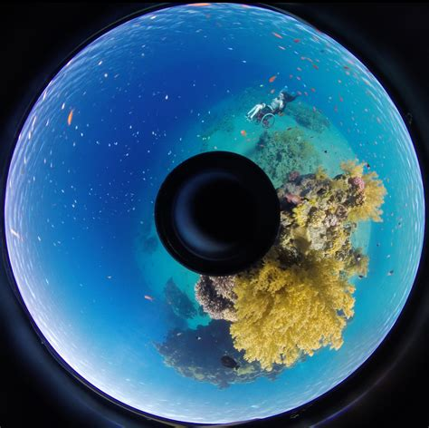 plymouth graduate plymouth graduate presents showcase of 360 degree