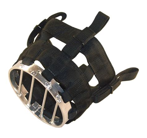 stable equipment and fixtures bibs muzzles cribbing