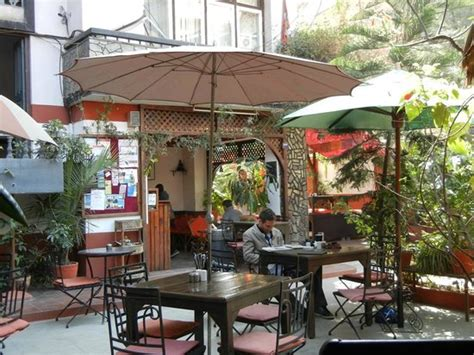 Outdoor seating at Gaia Restaurant & Coffee Shop Picture