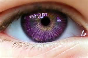 eye color mutations 25 best ideas about eye color on beautiful