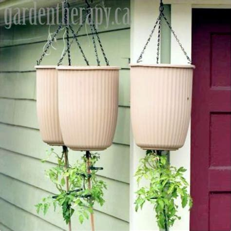 hanging planters diy shower your home with greenery with these 20 diy hanging