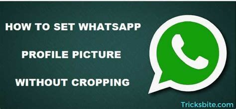 Themes For Whatsapp Profile | how to download themes in whatsapp