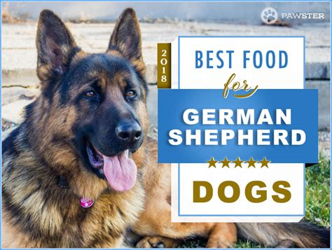 best food for german shepherd puppy top 6 recommended best foods for a german shepherd