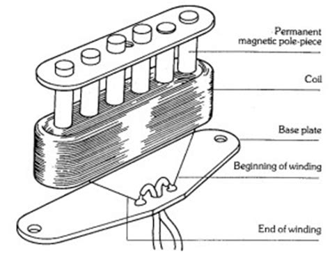 humbucker vs single coil explained the hub